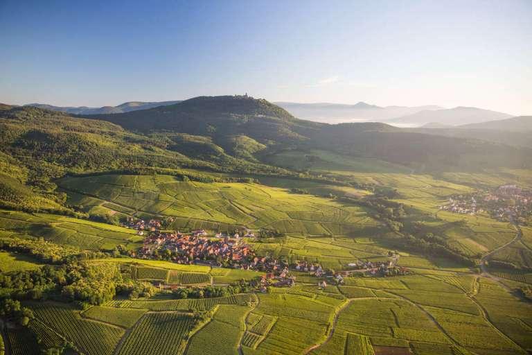 Route des Vins d'Alsace-©Tristan Vuano-1